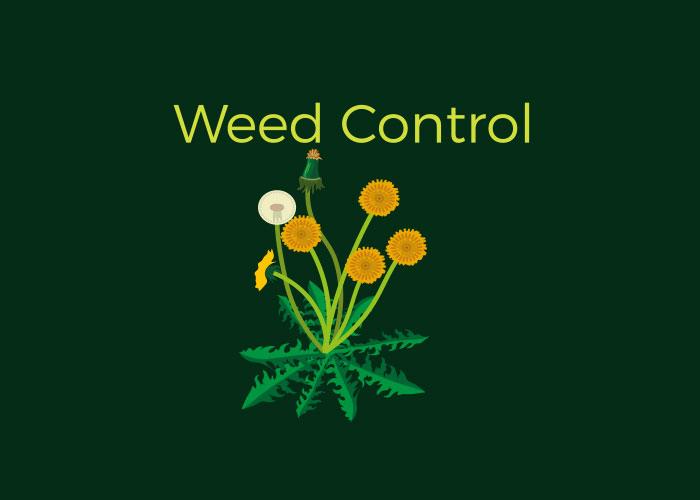 Fertilization, Seeding, Weed and Pest Control